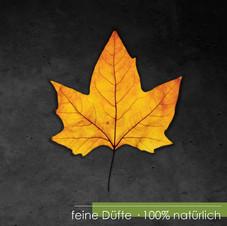 Moin Herbst 1.jpg