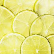 Zitronengras bio Öl