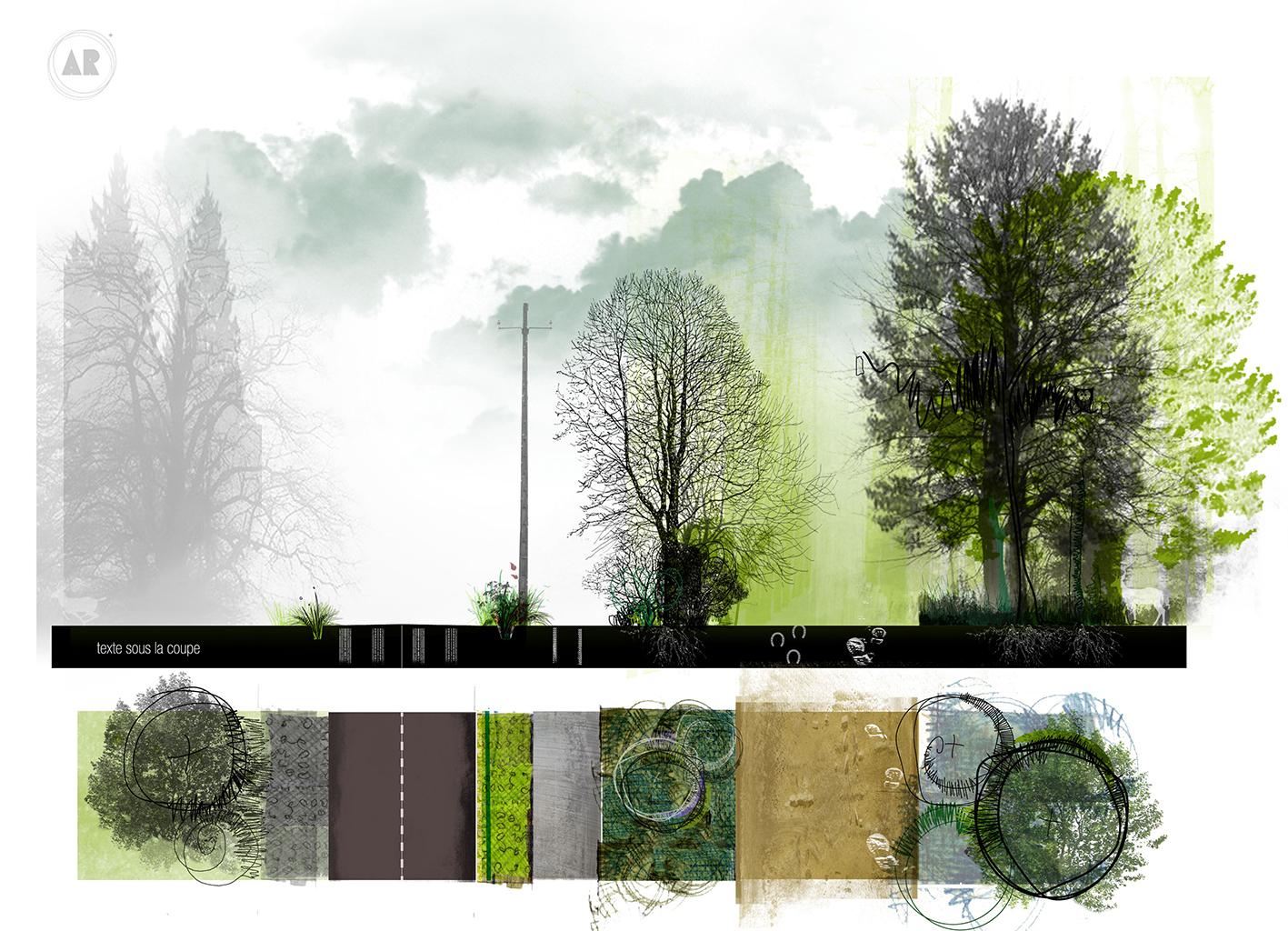 Projet de Fin d'Etude - ENSNP Blois