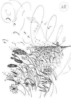 Pédagogie - Les plantes et le vent
