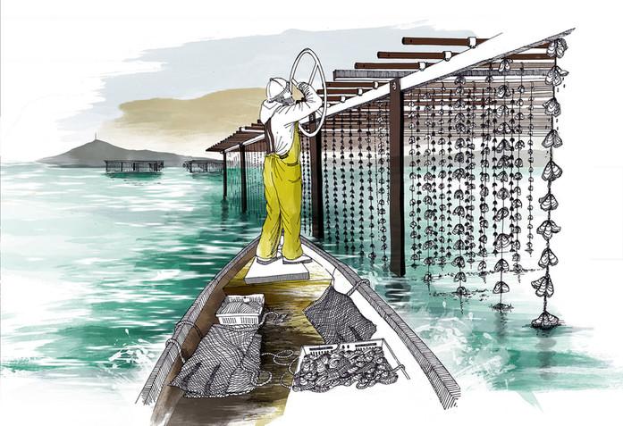 Ostréiculture sur l'Étang de Thau
