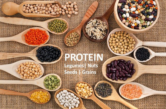 Here are 17 plant foods that contain a high amount of protein per serving.