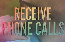 Receive Phone Calls.jpg