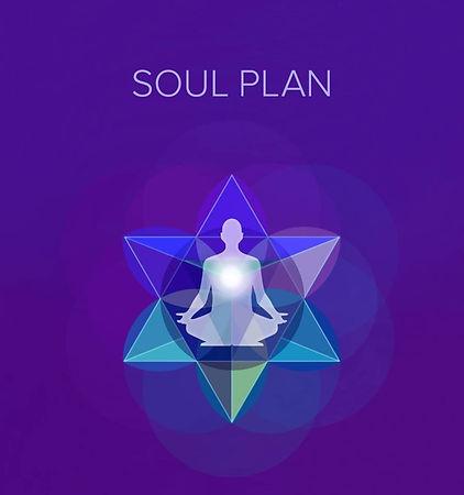 Soul%20Plan%20Logo_edited.jpg