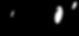 logo_petitnoir_straight.png