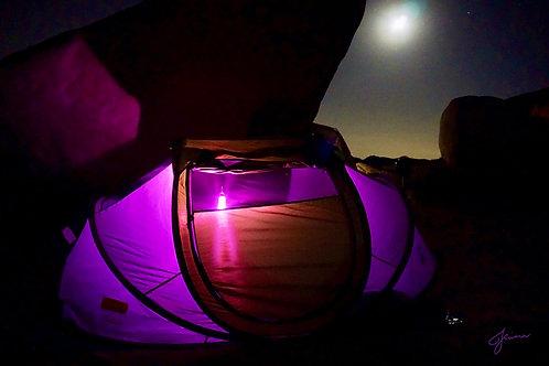 Jhenny Rivera: Purple Camp Print