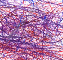 Dodd_Joshua_Untitled (Purple Blue Red)_1