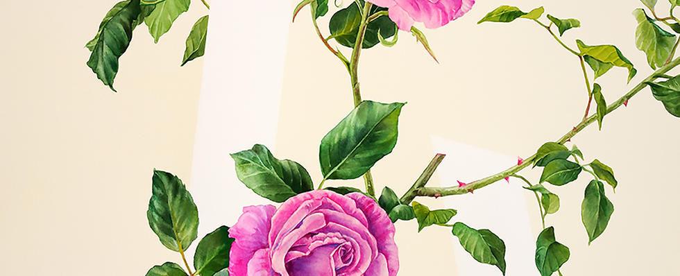 Composition with Rose