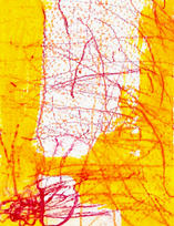 Hollenbeck_Butch_Untitled (Yellow and Or