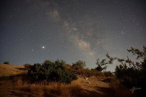 Jhenny Rivera: Milky Way Print