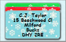Christmas Labels (50mm x 25mm) (100 in a Pack)