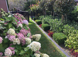 Garden design: planting design