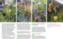 page 3 lowest.jpg