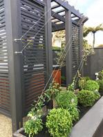 Pergola and planter box design by MosaicDesign