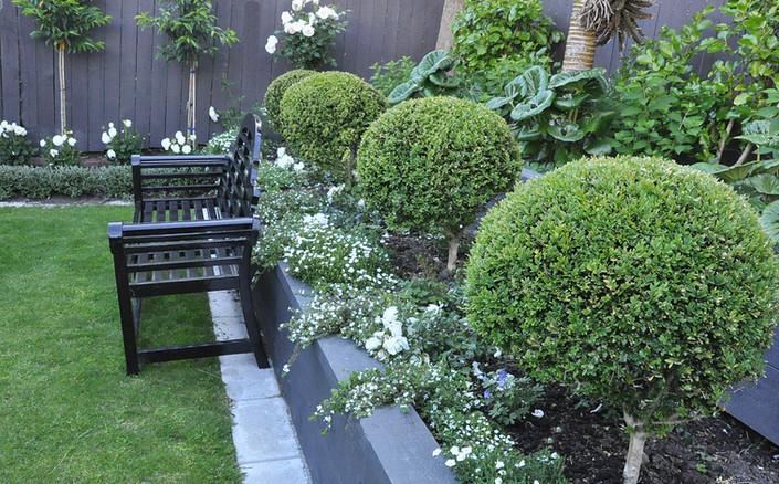 Thorndon garden designed by Mosaicdesign