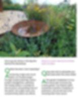 page 4 lowest.jpg