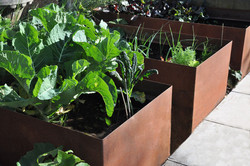 Planter box designed by MosaicDesign