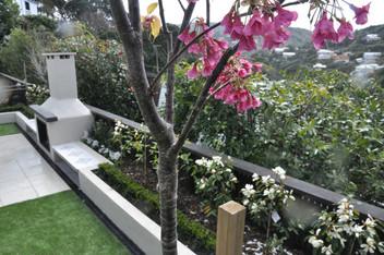 Wadestown garden designed by Mosaic Design