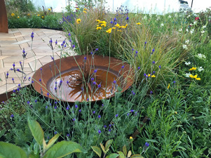 A Pollinators Paradise designed by Mosaicdesign and Tidygardens