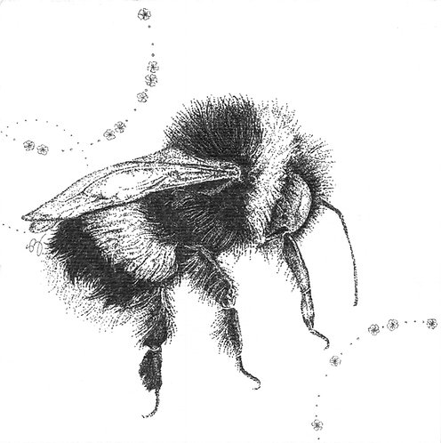 Untitled Bee
