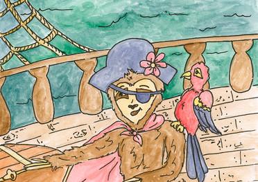 Cici the sloth's pirate adventure