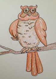 Owl Character Sketch