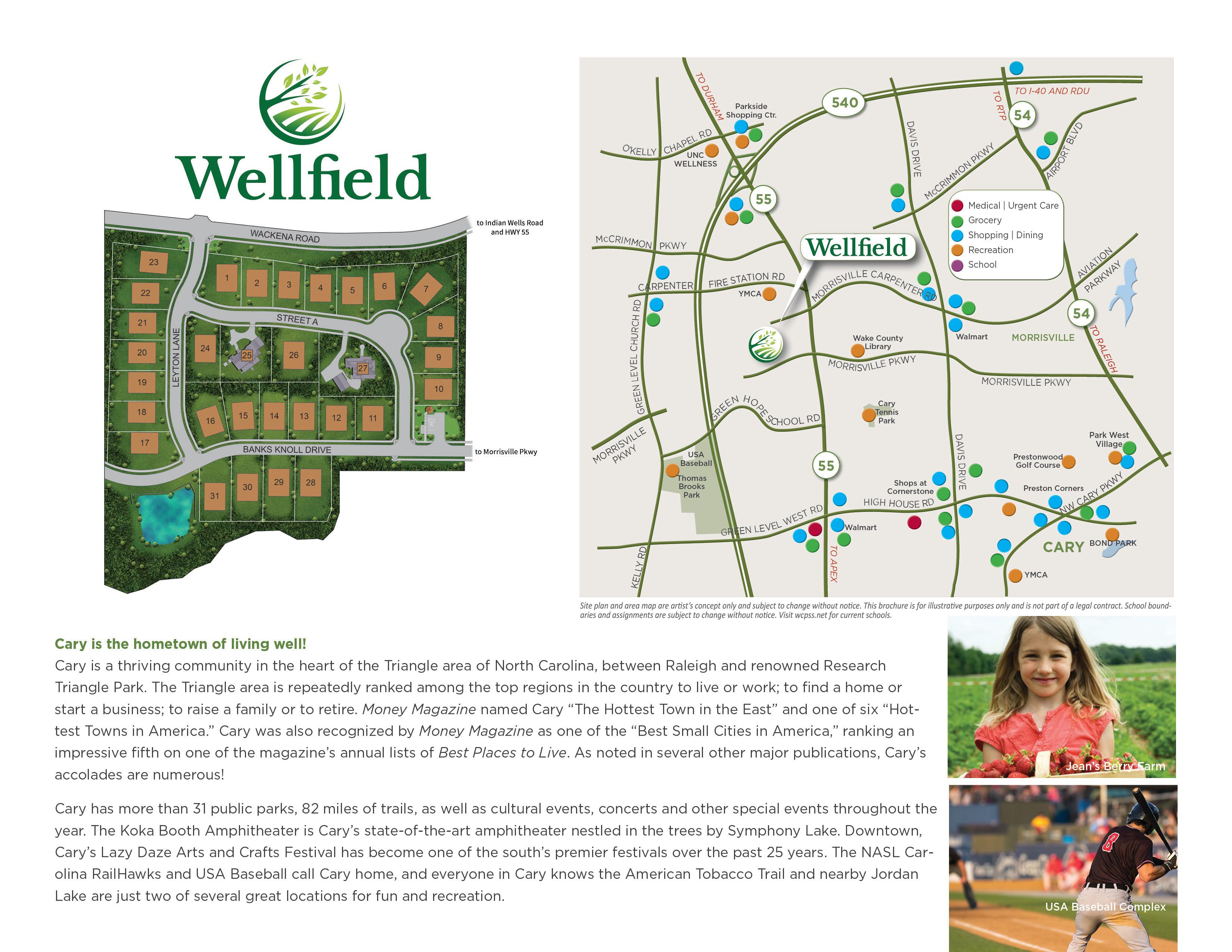 Wellfield Brochure3