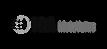 IGA_metavalue_logo_edited.png