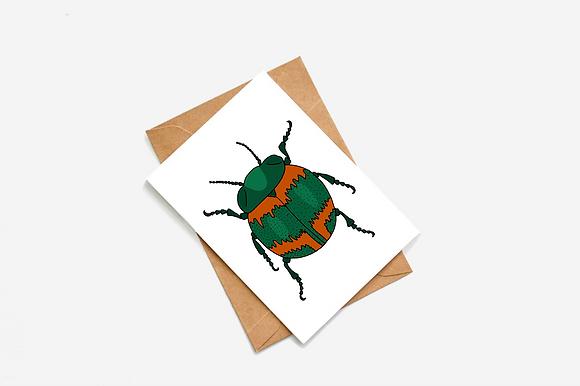 Beetle - Green & Orange lllustration card