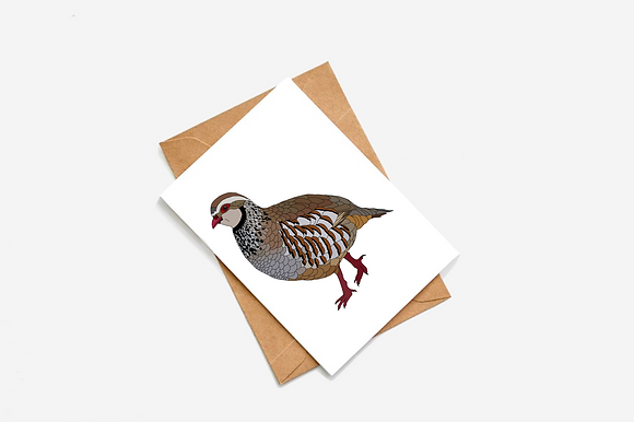 Partridge lllustration card