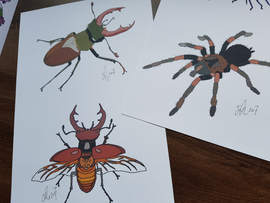 Commissioned Insects