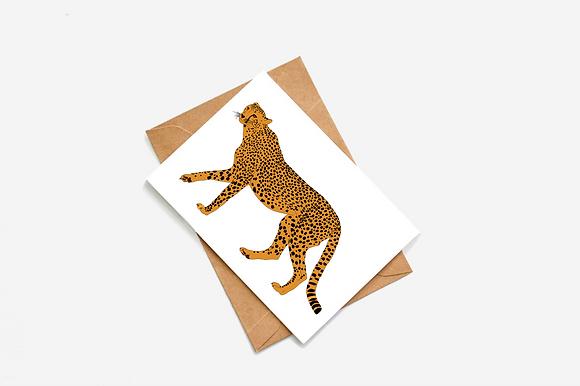 Cheetah Illustration card