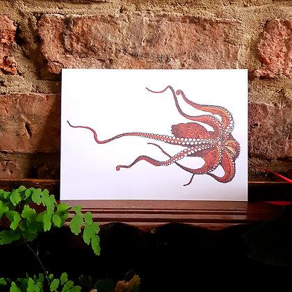 Octopus Print - White