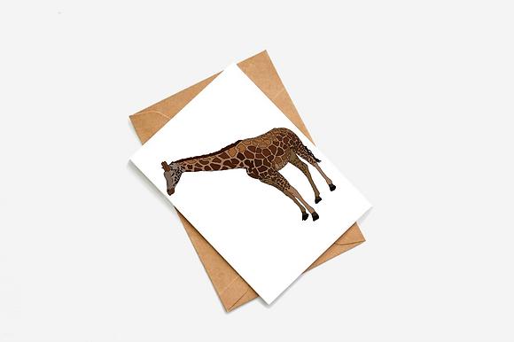 Giraffe Illustration card