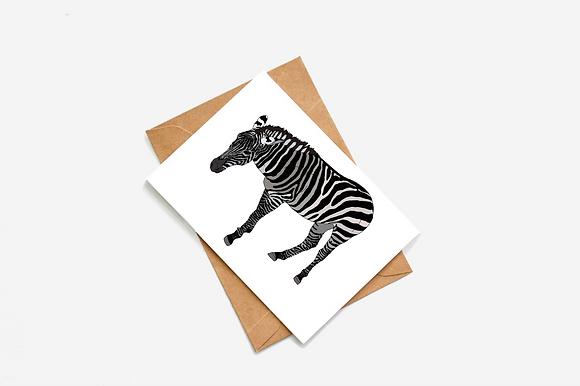 Zebra Illustration card