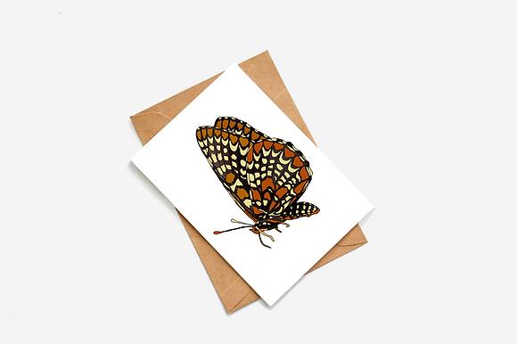 Butterfly - II Illustration card