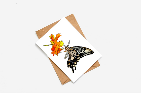 Butterfly - III Illustration card