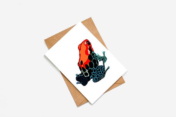 Dart Frog Illustration card