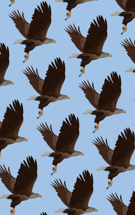 Eagle Pattern Commission