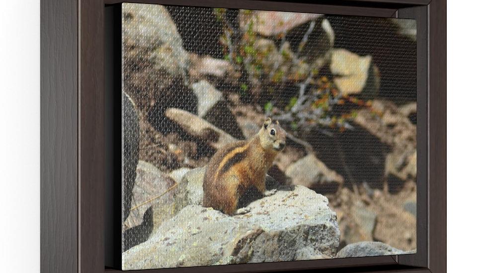 Mountain Chipmunk Horizontal Framed Premium Gallery Wrap Canvas
