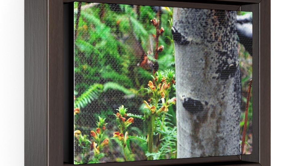 Hummingbird in the Mountains Horizontal Framed Premium Gallery Wrap Canvas