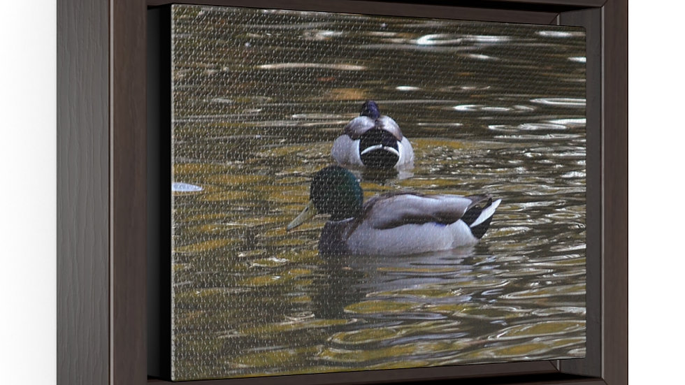 Duck on the Water Horizontal Framed Premium Gallery Wrap Canvas