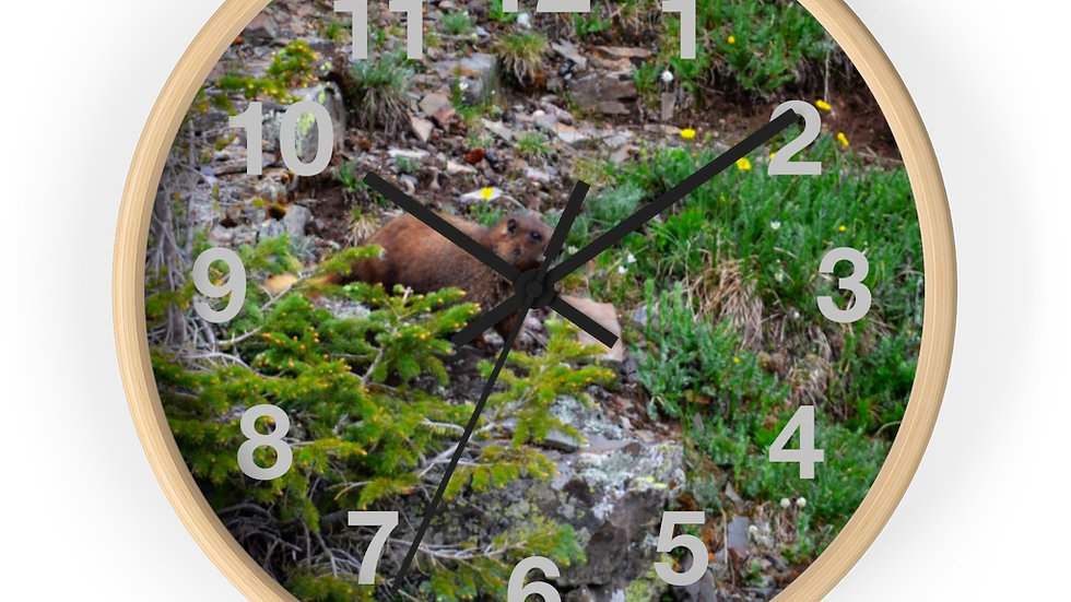 Marmot in the Grass Wall clock