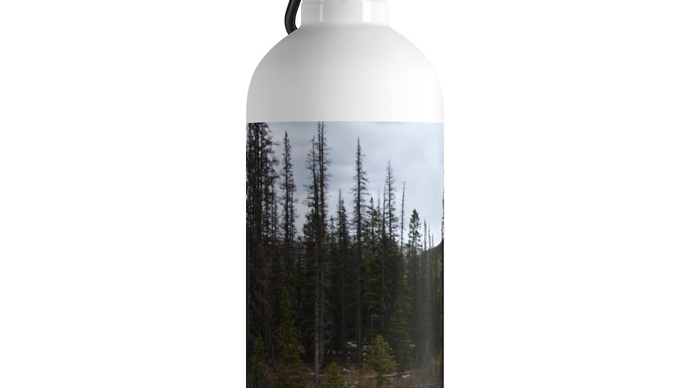 Mountain River Stainless Steel Water Bottle