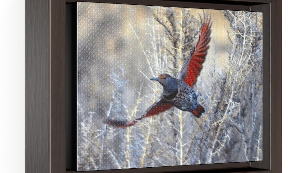 Bird in Flight Horizontal Framed Premium Gallery Wrap Canvas