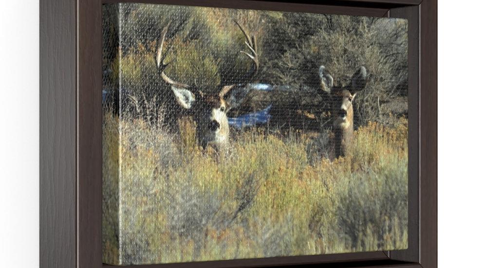 Deer-Buck and Doe Horizontal Framed Premium Gallery Wrap Canvas