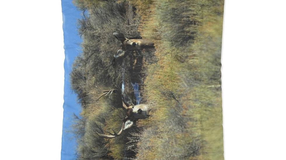 Mule Deer, Buck and Doe Comforter