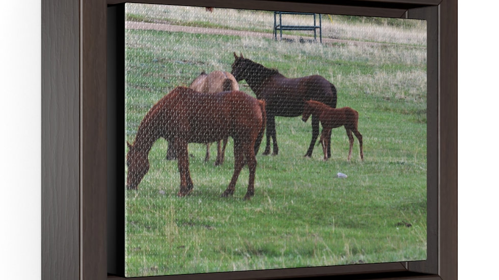 Horses in the Pasture Horizontal Framed Premium Gallery Wrap Canvas