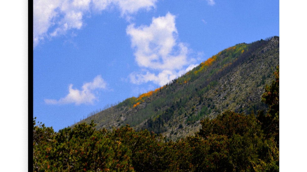 Fall in the Mountains Canvas Gallery Wraps