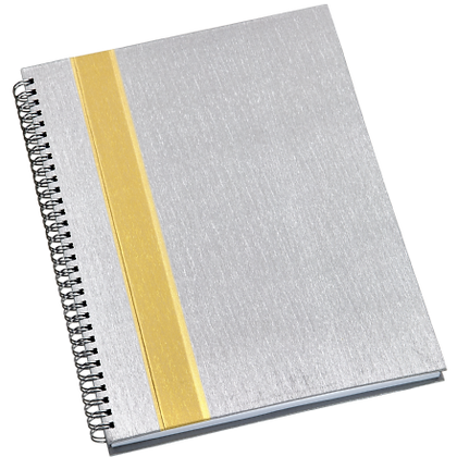313L - Caderno de Negócios